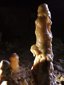 Rauroa Cave P Farm 3 WM.jpg: 768x1024, 336k (2009 Apr 03 00:00)