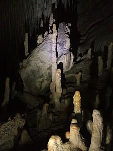 Rauroa Cave P Farm WM 13-7-08.jpg: 768x1024, 344k (2009 Apr 03 00:00)