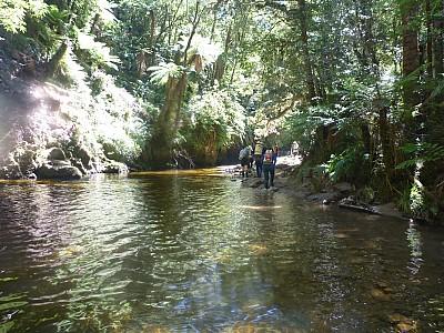 2011-01-26 11.54.48 P1020033 Simon Up Ryan Creek.jpeg: 4000x3000, 5778k (2014 Aug 12 22:14)