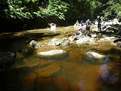 2011-01-26 13.05.54 P1020037 Simon Break in Ryan Creek.jpeg: 4000x3000, 5677k (2014 Aug 12 22:15)