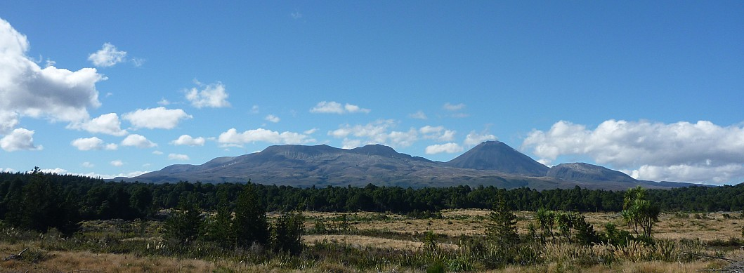 View of Tongariro from John MacDonald Road