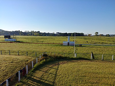 2018-10-21 07.29.31_HDR LG6 Simon - Wairoa racecourse.jpeg: 4160x3120, 6902k (2018 Oct 24 09:05)